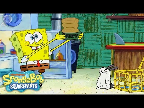 SpongeBob Adopts a Sea Bunny! 🐰 EXCLUSIVE Sneak Peek | SpongeBob SquarePants | Nick