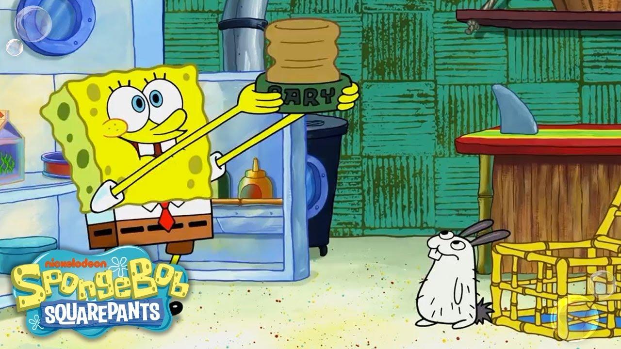 spongebob adopts a sea bunny! 🐰 exclusive sneak peek | spongebob