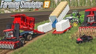 Farming Simulator 19 - Multijoueur et nouvelle culture !