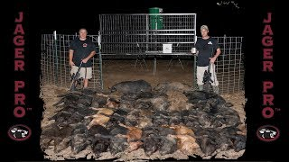 Wild Hog Trapping | (28) Using Integrated Wild Pig Control™ For Wild Hog Control | JAGER PRO™