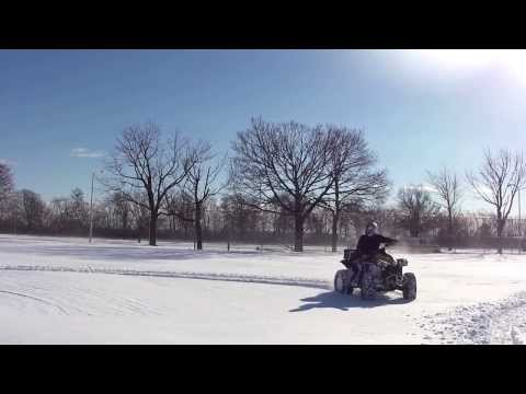 Pitbull Growlers in the snow