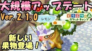 【ポケ森】アップデートでフータとぺりおが新登場!