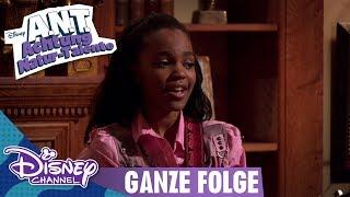 A.N.T. ACHTUNG NATUR-TALENTE - Folge 1 in voller Länge | Disney Channel App