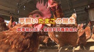 平飼いたまごの誕生 農事組合法人 会田共同養鶏組合