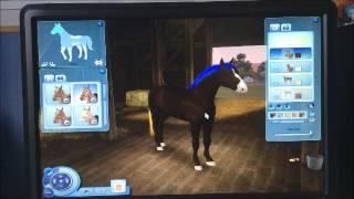Comment faire un cheval sims 3 ?