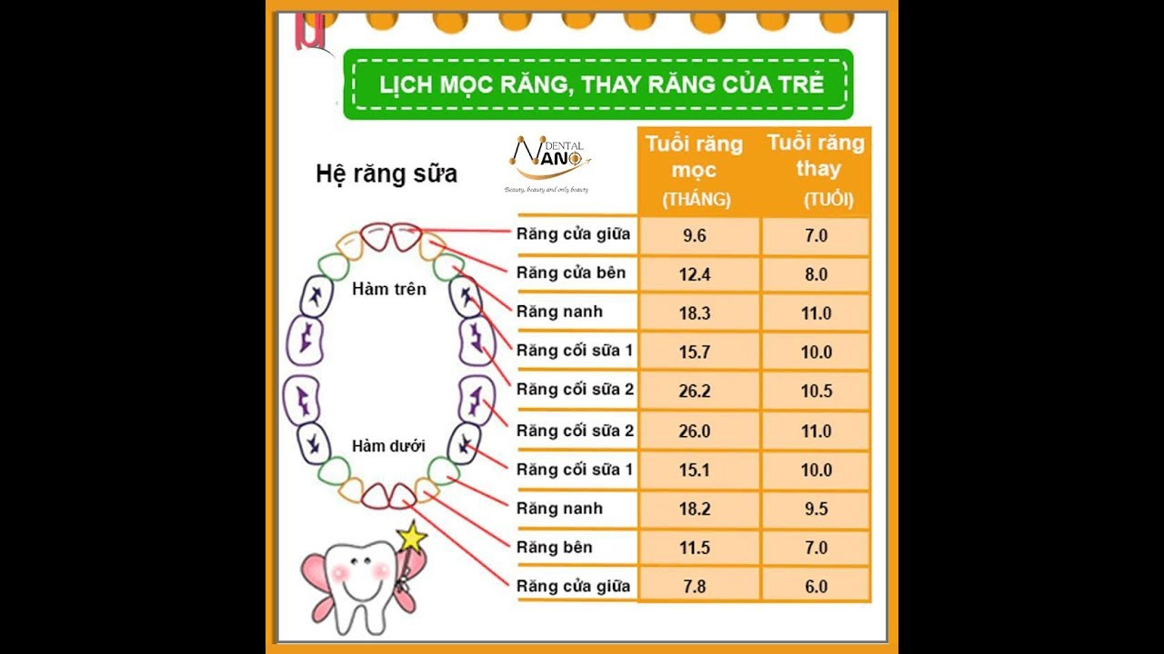 Lịch mọc răng và thứ tự thay răng sữa được bác sĩ nhi khoa chia sẻ các mẹ nhớ lưu lại nhé
