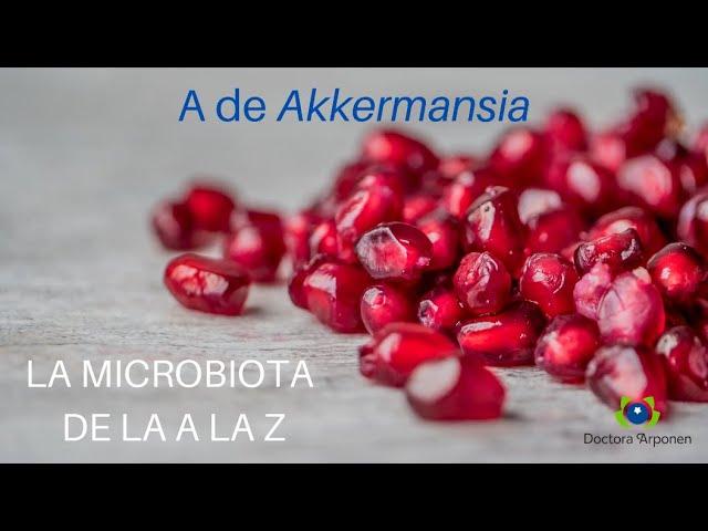 El ABC de la Microbiota con la dra Arponen - A de Akkermansia