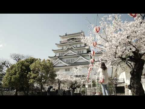Japanese Castle Vlog | Panasonic GF7