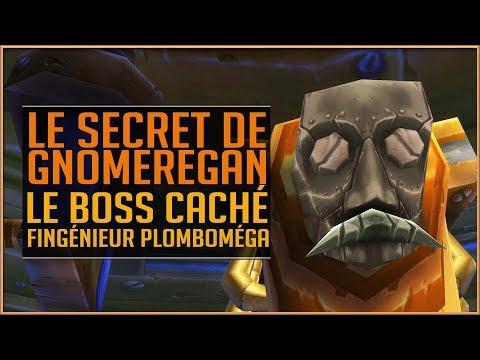 LE SECRET DE GNOMEREGAN - LE BOSS CACHÉ FINGÉNIEUR PLOMBOMÉGA