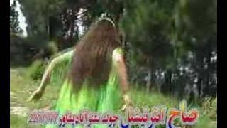 Kosi Zani Pashton Daagh Amada Kosi Kir Khori Pashton