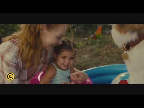 youtube filmek - EGY KUTYA NÉGY ÚTJA előzetes (12)