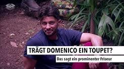 Trägt Domenico ein Toupet? | RON TV |