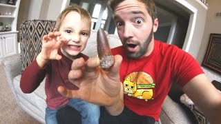 Father & Son GET REAL DINOSAUR TOOTH (Huge!)