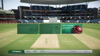 Don Bradman Cricket 17 - Batting Tutorial (PlayStation 4)
