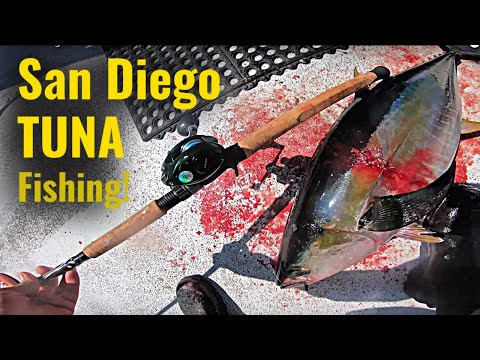 EPIC Tuna Fishing On A San Diego Charter Boat!