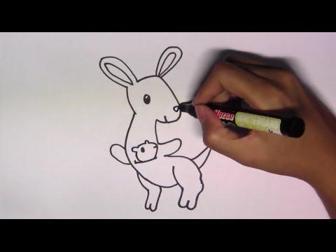 วาดรูปการ์ตูนน่ารัก ระบายสี และเรียนรู้ภาษาอังกฤษ Kangaroo จิงโจ้