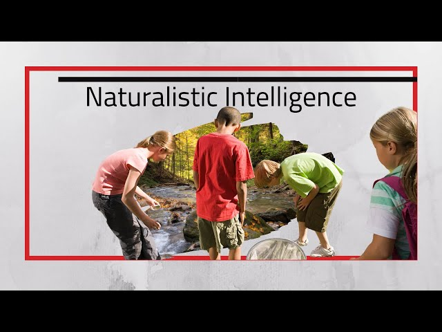 Naturalist Intelligence Naturalistic Learners