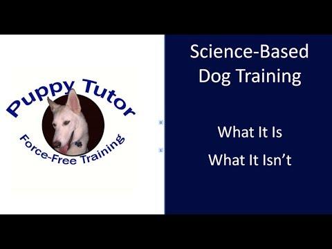 Puppy Tutor Dog Training - Economical, Humane, Effective