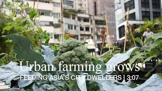 Urban farming grows