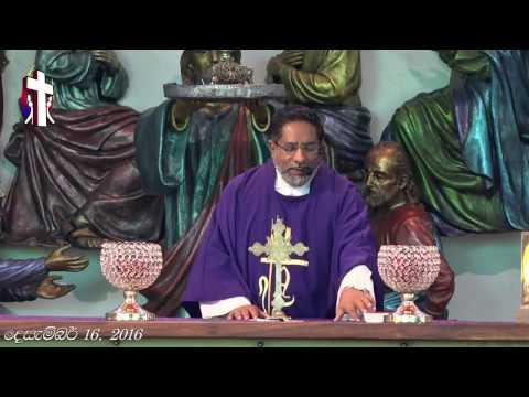 Holy Mass | 16 Dec 2016