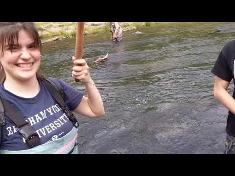 Catching Trout On Tenkara