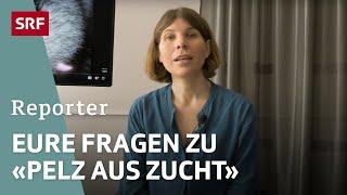 Q&A zur Reportage «Pelz an Winterjacken» | Reportage | SRF DOK