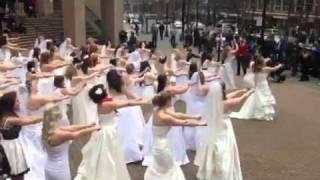 Allison's Wedding Dress flash mob