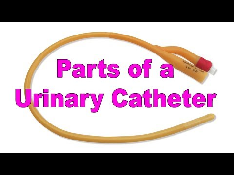 Parts of a Urinary Catheter