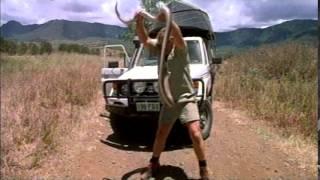 Video The Crocodile Hunter: Collision Course download MP3, 3GP, MP4, WEBM, AVI, FLV Juni 2017
