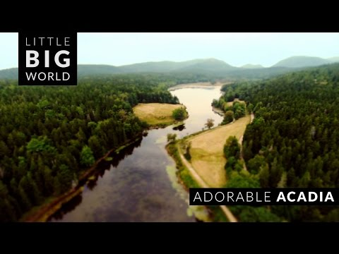 Adorable Acadia National Park (Time-Lapse , Aerial, Tilt-Shift)