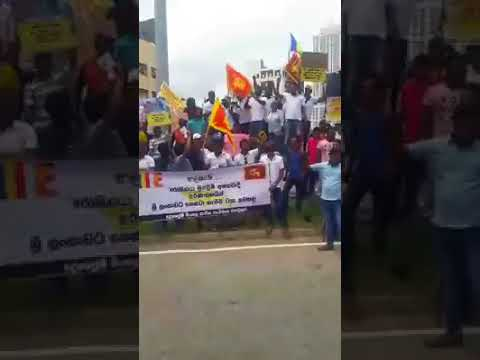 Today Sri Lankan as a stand for Myanmar citizens rally to express support for ASSK now