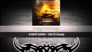 A New Dawn (Ned) - Veil Of Charity