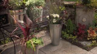 How To Turn A Galvanized Bucket Into A Container Garden