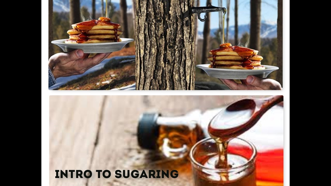 intro to sugaring part 1 youtube