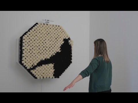 Interactive Fur Mirror PomPom