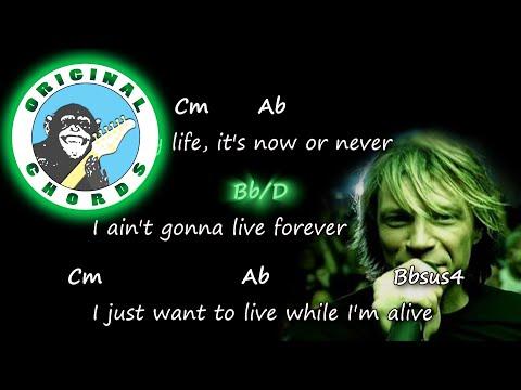 Bon Jovi - It's My Life - Chords & Lyrics