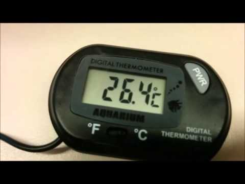 [FAIL] Digital aquarium thermometer experiment – Boiling Water Test