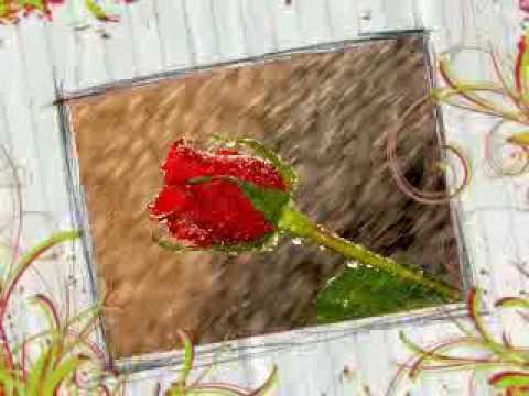 Forever Love Songs - Sun Beliya Shukriya Maherbani !