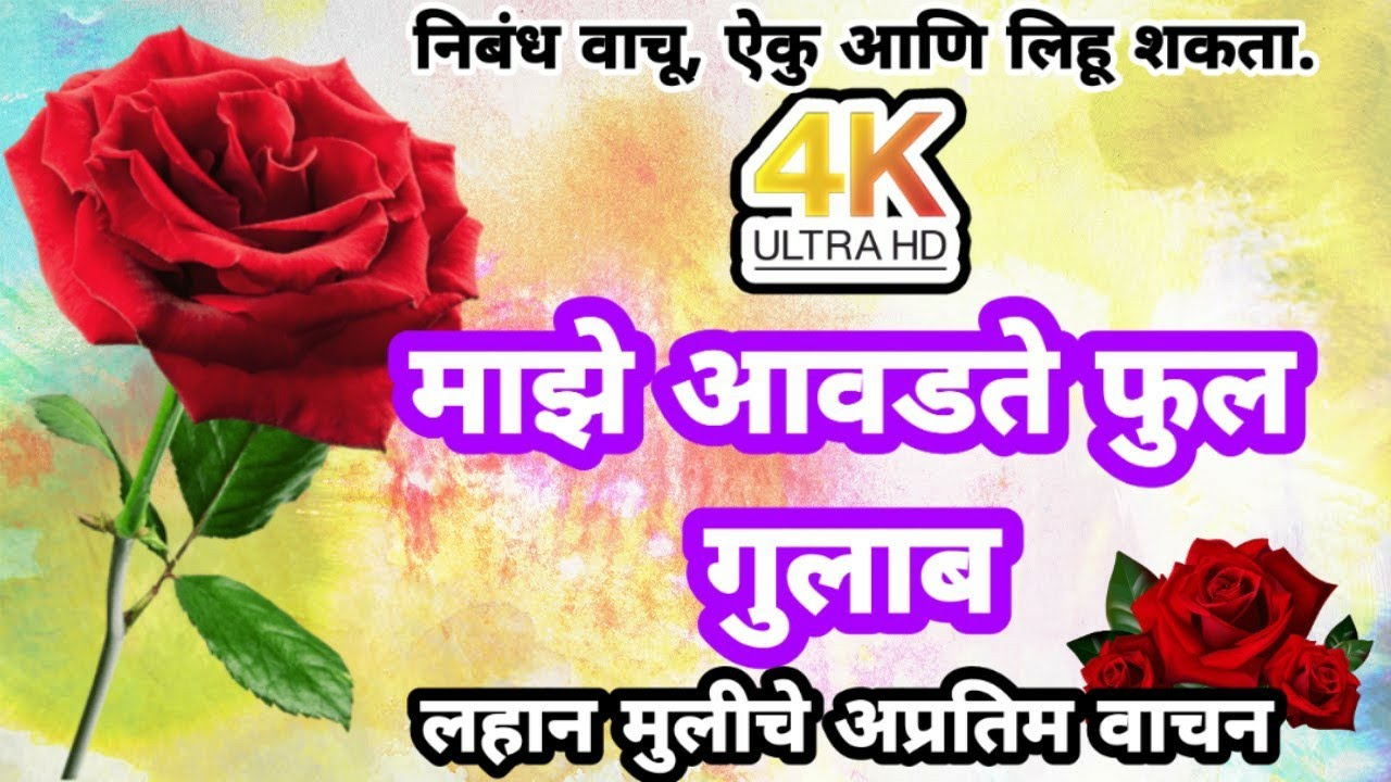 म झ आवडत फ ल ग ल ब My Favourite Flower Rose Essay In Marathi Marathi Nibandh Onlinegurujimarathi Youtube