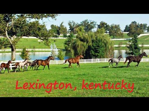 Welcome To Lexington, Kentucky