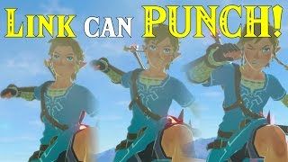 Link can PUNCH! in Zelda Breath of the Wild