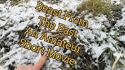 Beast From The East: An Amateur Video