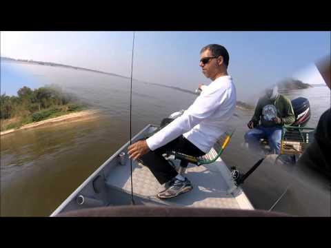 Gaivota atacando a garça - GoPro Hero4 Session - Rio Araguaia