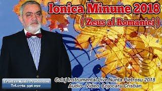 Ionica Minune 2018 - Colaj Instrumental Muzica Lautareasca (Live Nunta Pietrosu 2018)