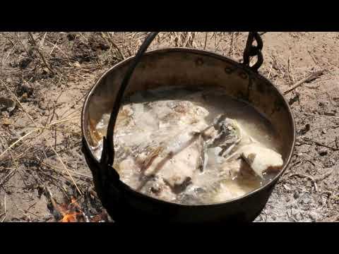 Риболов Видубицького монастиря,