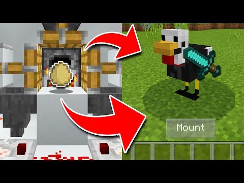 How To TRAIN CHICKENS In Minecraft! (Pocket Edition, Xbox, PC)