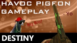 DESTINY - Havoc Pigeon Only - Like a baby Last Word in your pocket!