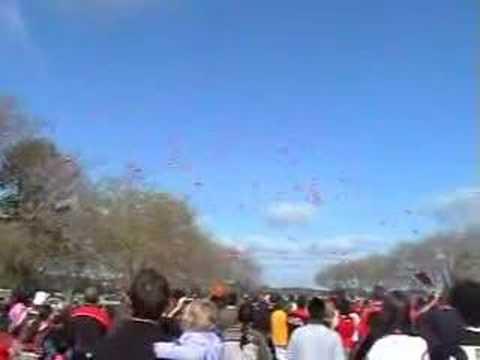 Peter Brock Balloon Release in NZ