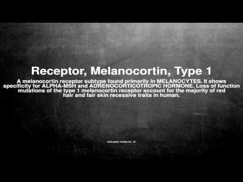 Medical vocabulary: What does Receptor, Melanocortin, Type 1 mean