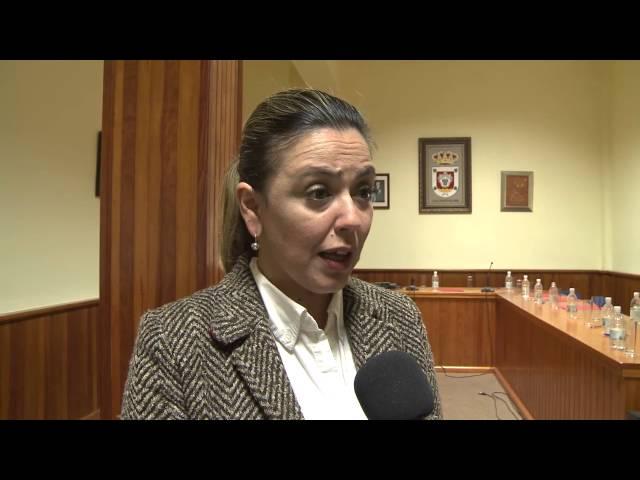 Pleno municipal (27-03-2014)